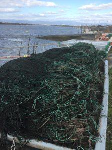 秋芽網から冷凍網へ