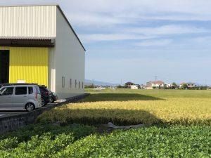みやま工場 秋の作業風景